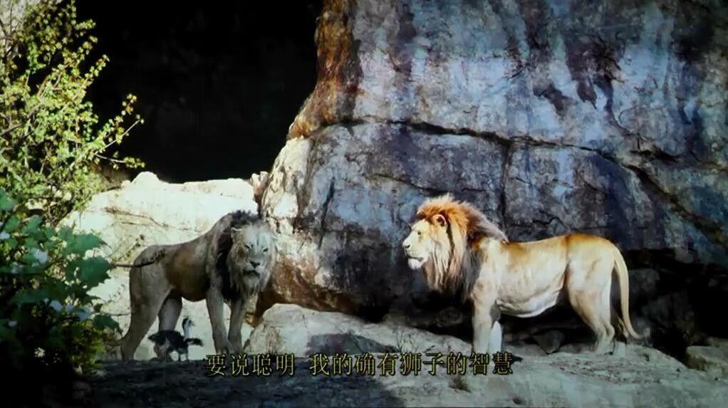 狮子王电影枪版 豆瓣7.4分