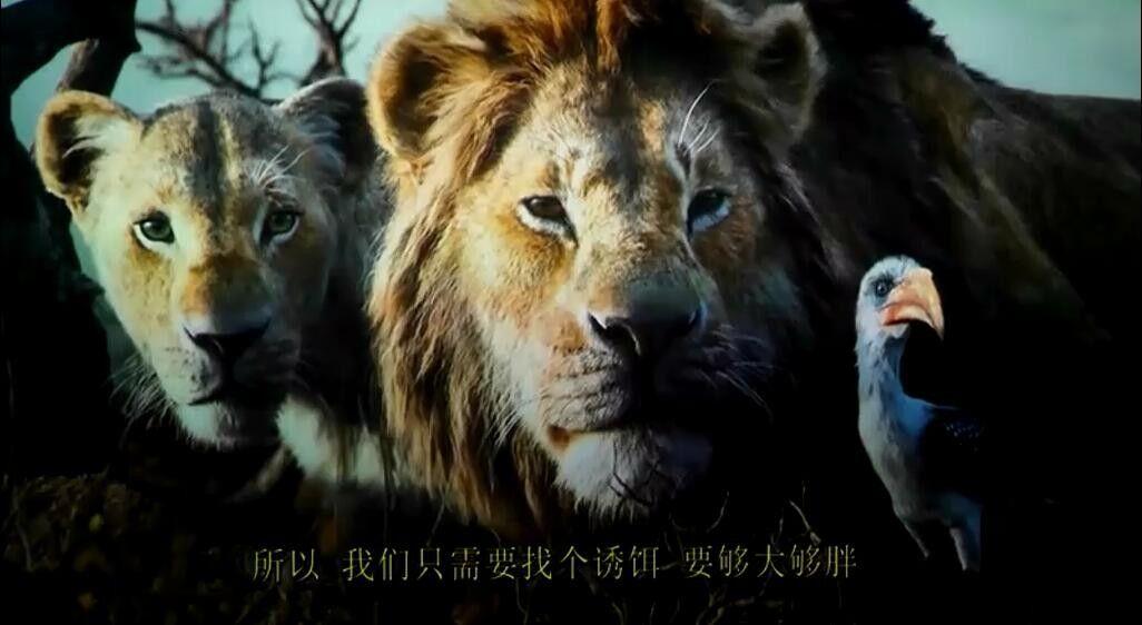 《狮子王电影枪版 豆瓣7.4分》